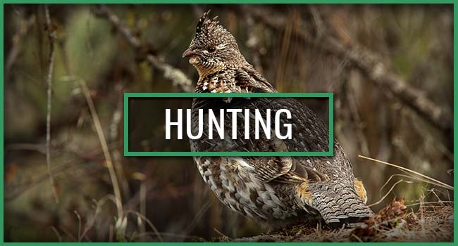 Snowbank Lodge and Outfitters Hunting Trips