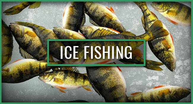 Snowbank Lodge and Outfitters Ice Fishing Trips